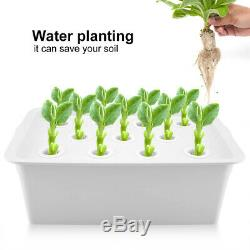 11 Holes Hydroponic System Grow Plants Water Soilless Culture Box Without Oil