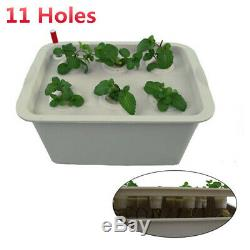 11 Plant Indoor Site Watering Hydroponic System Grow Kit DWC Deep Culture Bubble