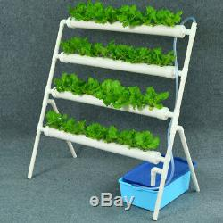 36 Site Holes Plant Hydroponic System Water Culture Grow Kit Garden Vegetables