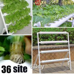 36 Sites Hydroponic Site Grow Kit Ladder-type Plant System Vegetable