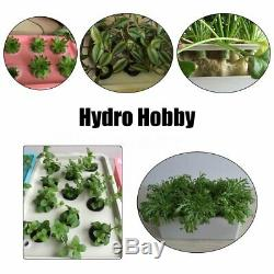 6 Holes Plant Site Hydroponic System Grow Bubble Tub Box Deep Water Culture