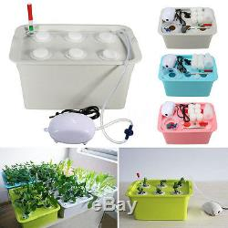6 Holes Plant Site Hydroponic System Grow Kit Bubble Tub Air Pump Water Culture