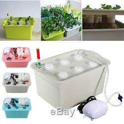 6 Plant Site Deep Water Culture Hydroponic System Bubble Tub Air Pump Grow Kit