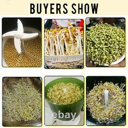 Automatic Sprouter Bean Growing Machine Large-capacity Sprouting Seedling Tools