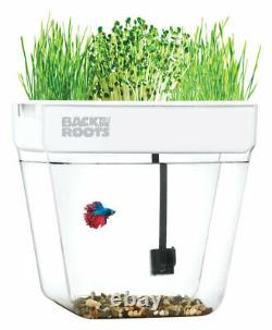 Back to the Roots-32000 Assorted Flower and Herb Grow Kit