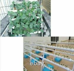 CA Stock 1 PC Hydroponic 54 Plant Site Grow Kit Ebb Water Culture Garden System