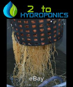 Complete Hydroponic System DWC Grow Kit #4 by H2OToGro