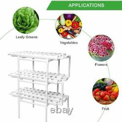 Greenhouse Indoor Hydroponic Grow System Vertical Plant Lettuce Strawberry