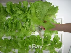 Hydroponic 108 Plant Growing Plant System For Plants Herbs Flowers
