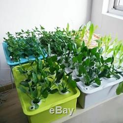 Hydroponic Box 24 Holes Plant Grow Tent Cultivation Room Indoor Seedling System