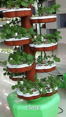 Hydroponic Organically Growing System for 64 Plants growing of Salads & Herbs
