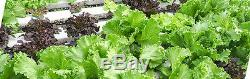 Hydroponic Pipe Growing 108 Plant System For Plants Herbs Flowers and Seeds