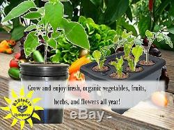 Hydroponic Plant Growing system DWC BUCKETS 5 Gal 4-sites H2OtoGro