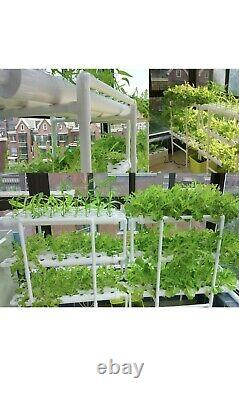 Hydroponic Plant Pipe 36 Site 4 Pipe Hydroponic Grow Kit Pipe Home Balcony Garde