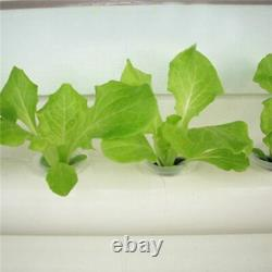 Hydroponic Site Grow Kit 36 Plant Vegetables Cultivation Garden Planting System