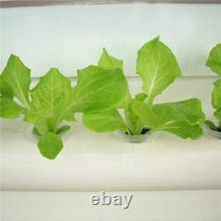 Hydroponic Site Grow Kit 36 Planting Sites Garden Plant System Vegetables Tool