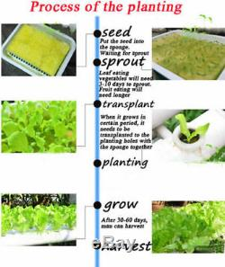 Hydroponic Site Grow Kit 72 Site Plant Seed Ebb Water Culture Garden System Pump