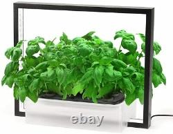 New Hydroponics Growing System, Support Indoor Grow, 2020 Herb Plant Grower