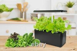 Small Hydroponics Garden on your kitchen table pot with Grow Light Indoor Garden
